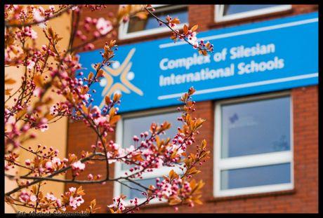 Budynek szkolny w Complex of Silesian International Schools, Polska
